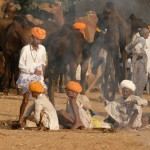 Pushkar: Gypsies, Gods & Dromedaries